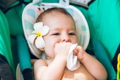 Kind zieht eine Serviette in seinem Mund Wenig Baby bei 8 Monate alten mit einer Frangipaniblume hinter dem Ohr Sitzt in einem Re stockfotografie
