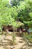 Kinder außerhalb eines Dschungelhausgartens Lizenzfreie Stockfotografie