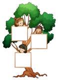 Kinder auf dem Baum mit weißem Vorstand Stockfotografie