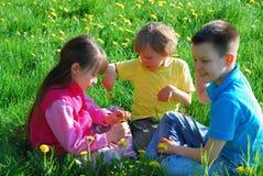 Kinder auf der Wiese Lizenzfreie Stockfotos