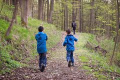 Kinder auf einem Wald des Weges im Frühjahr lizenzfreie stockfotografie