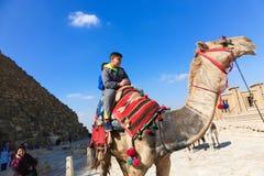 Kinder auf Kamel in Giseh-Pyramiden lizenzfreie stockfotos