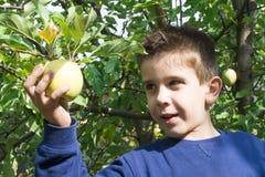 Kinder-Auswahl weg vom Apfel Stockfotografie