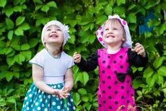 Kinder des kleinen Mädchens, die oben schauen Stockfoto