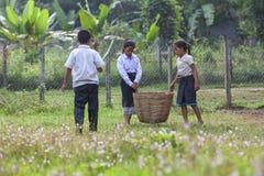 Kinder, die Abfall in der Schule auswählen stockfotografie