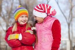 Kinder, die abwärts sledding sind Stockbilder