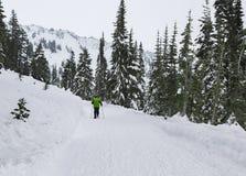 Kinder, die abwärts sledding sind Mt regnerischeres NP, WA USA - Januar, 3d 2016 Lizenzfreie Stockbilder