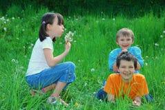 Kinder, die auf dem Gebiet spielen Lizenzfreies Stockfoto