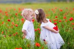 Kinder, die auf dem roten Mohnblumenblumengebiet spielen Lizenzfreie Stockfotos