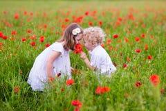 Kinder, die auf dem roten Mohnblumenblumengebiet spielen Lizenzfreies Stockbild
