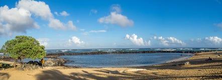 Kinder, die Bereich am Lydgate-Nationalpark schwimmen Lizenzfreie Stockfotografie