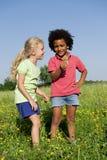 Kinder, die Blumen aufheben Lizenzfreies Stockfoto