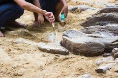Kinder, die Dinosaurierfossilsimulation lernen Lizenzfreie Stockbilder