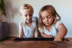 Kinder, die einen alten hölzernen Stamm untersuchen lizenzfreie stockfotos