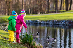 Kinder, die Enten im Herbstpark einziehen Stockfotografie