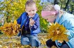 Kinder, die Fallblätter montieren lizenzfreie stockfotografie