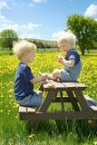 Kinder, die Frucht-Picknick draußen haben Lizenzfreies Stockfoto