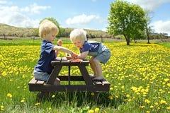 Kinder, die Frucht-Picknick draußen haben Stockbilder