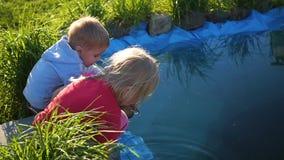 Kinder, die im Park nahe dem Teich spielen Sonniger Tag des Sommers stock footage
