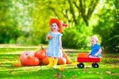 Kinder, die am Kürbisflecken spielen Lizenzfreies Stockfoto