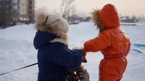 Kinder, die mit einem Hund im Winter bei Sonnenuntergang spielen stock video