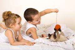 Kinder, die mit einem Kätzchen und einer Garnkugel spielen Lizenzfreies Stockfoto