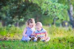 Kinder, die mit Kiefernkegeln spielen Stockbilder