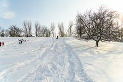 Kinder, die mit Schnee nach Schneefällen am Winter-Tag in Tineretului-Park von Bukarest spielen Stockfoto