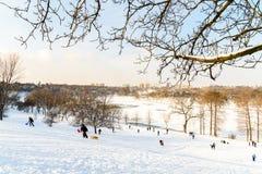 Kinder, die mit Schnee nach Schneefällen am Winter-Tag in Tineretului-Park von Bukarest spielen Lizenzfreies Stockbild