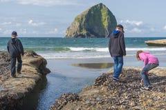 Kinder, die tidepools an der pazifischen Stadt Oregon explorying sind lizenzfreies stockfoto