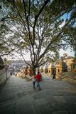 Kinder, die um Pashupatinath-Tempel gehen stockbilder