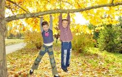 Kinder, die vom Zweig des Baums hängen Lizenzfreies Stockbild