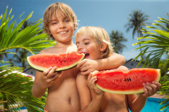 Kinder, die Wassermelonen essen Stockfoto