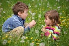 Kinder, die am Wiesen- und Schlaglöwenzahn plaing sind lizenzfreie stockfotos