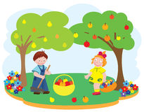 Kinder in einem Garten Stockfotografie