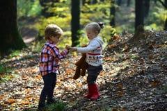 Kinder ernten Gras im Herbstwaldbruder- und -schwesterspiel auf Frischluft Kleiner Junge und Freundinnen haben Spaß im Holz Stockbilder