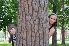 Kinder hinter einem Baum lizenzfreie stockfotografie