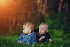 Kinder im Gras Stockfotografie