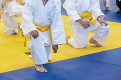 Kinder im Kimono auf Kampfkunstfortbildungsseminar Lizenzfreie Stockbilder