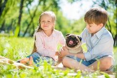 Kinder im Park mit Haustier Stockbild