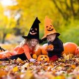 Kinder mit Kürbisen auf Halloween Stockbilder