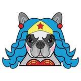Kinder reden netten französische Bulldogge weiblichen Hundesuperheld-Comicfigurvektor in der Farbe an stockfotos