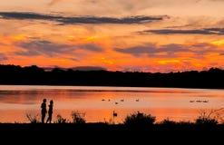 Kinder am See während der aufpassenden Enten des Sonnenuntergangs lizenzfreie stockbilder