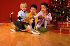 Kinder und Hund, die durch Weihnachtsbaum sitzen Lizenzfreie Stockfotografie
