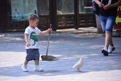 Kinder und Taube Lizenzfreies Stockbild
