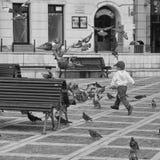 Kinder und Tauben Lizenzfreie Stockfotografie