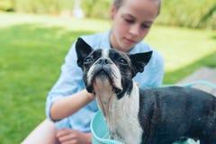 Kinder waschen Boston-Terrierwelpen im blauen Becken im Sommergarten lizenzfreie stockbilder