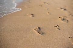 Kinderabdrücke im Sand Menschliche Abdrücke, die weg von dem Zuschauer führen Eine Reihe von Abdrücken im Sand auf einem Strand i Stockbilder