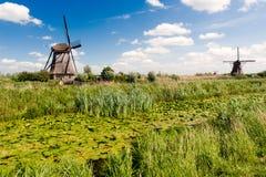 kinderdijk横向荷兰风车 免版税图库摄影