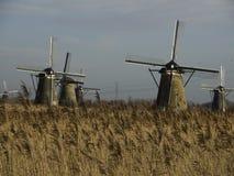 Kinderdijk στοκ εικόνες